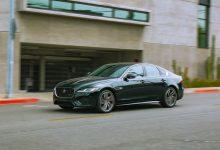 Photo of 2021. Jaguar KSF poseče mrtvo drvo
